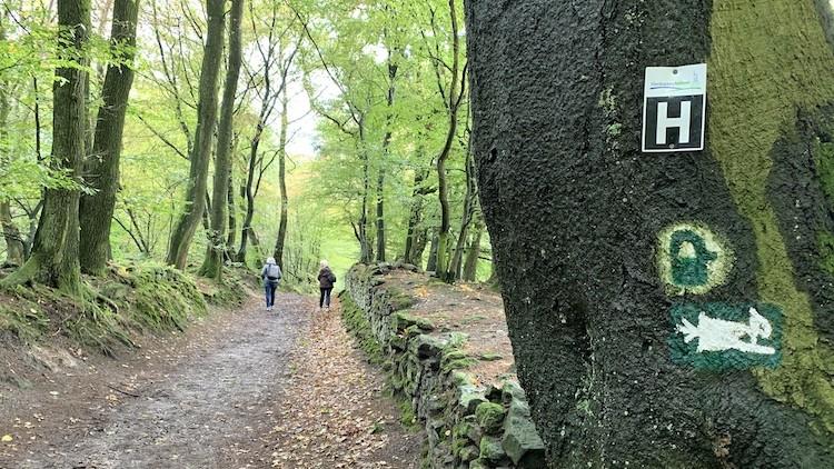 Hermannsweg wandelen