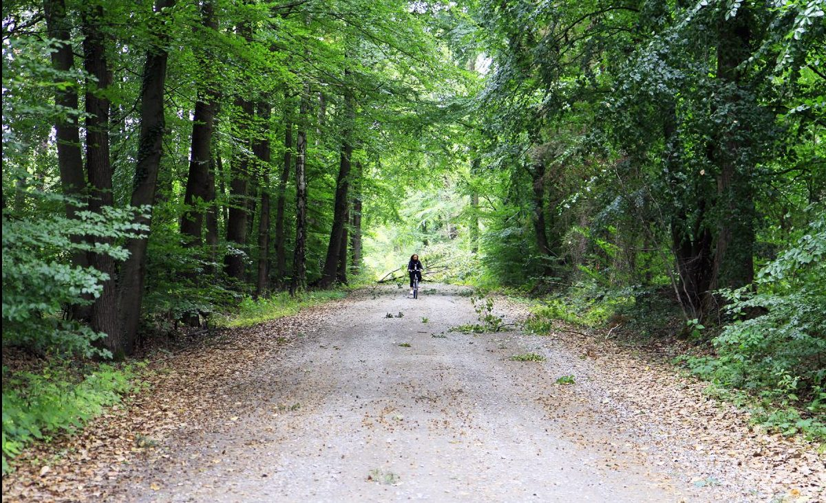 Op de fiets na een storm